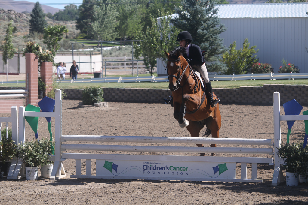community partner event horse show